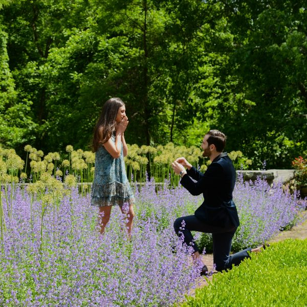 Follow the rose pathway - to an Epic Proposal